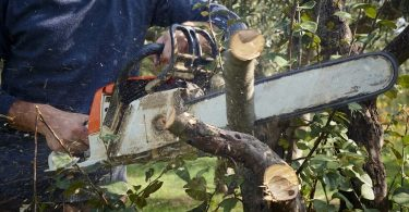 Why Does Your Chainsaw Cut Crooked & What to Do?