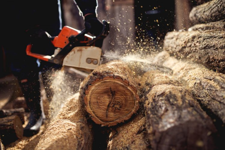 The Right Chainsaw File Sizes- Explained by Industry Experts