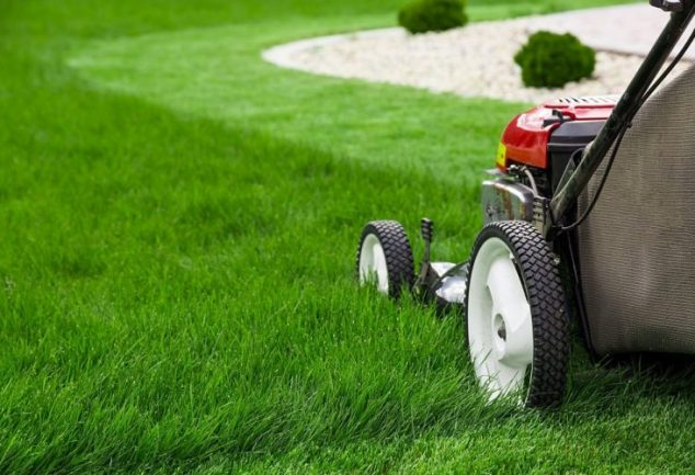 How to Change a Lawn Mower Tire – 11 Easy DIY Steps to Follow