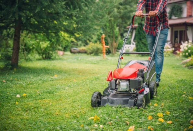 How to Use a Lawn Mower – DIY Step-by-Step Guide with Pro Tips!